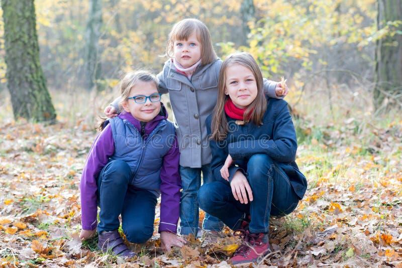 Gelukkige siblings - Drie zusters in het herfst bos glimlachen royalty-vrije stock afbeelding