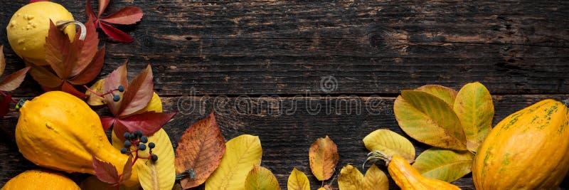 Gelukkige thanksging banner Selectie van diverse pompoenen op donkere houten achtergrond Autumn Vegetables royalty-vrije stock fotografie