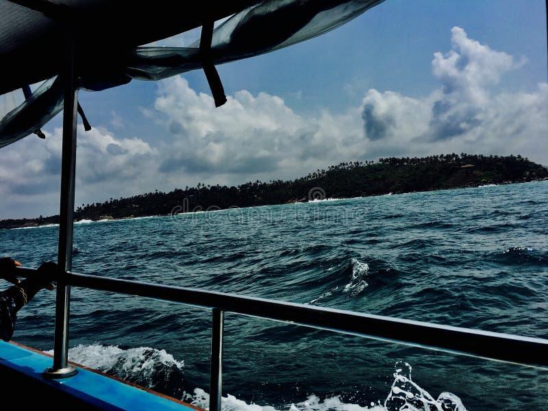 Gelukkige vakantie in deze dagen, zagen wij dolfijnen royalty-vrije stock fotografie