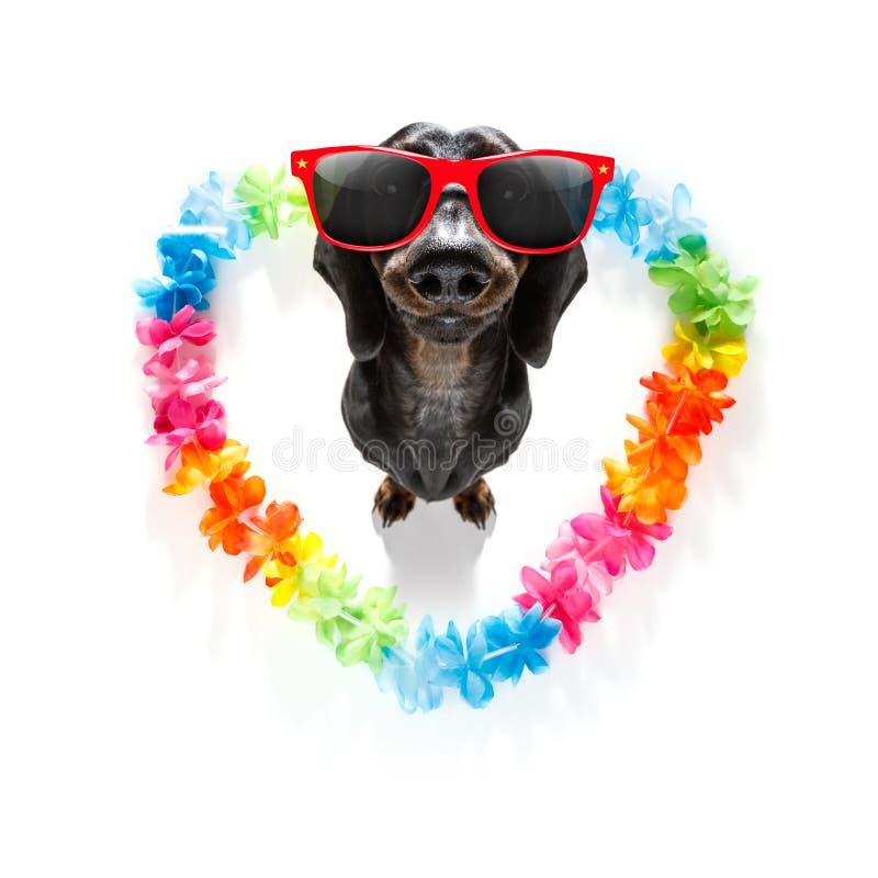 Gelukkige valentijnskaartenhond royalty-vrije stock afbeelding