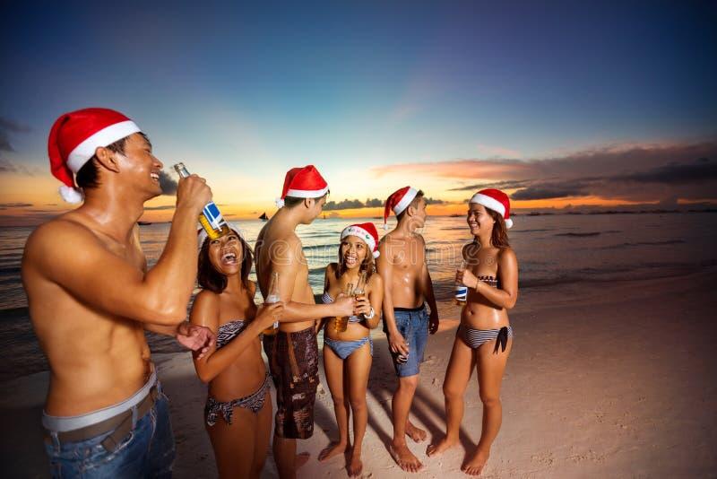 Gelukkige vrienden bij de zomervakantie het roosteren voor Kerstmis stock fotografie
