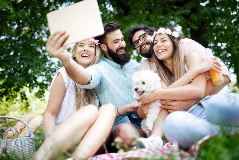 Gelukkige vrienden in het park die picknick op een zonnige dag hebben stock foto's