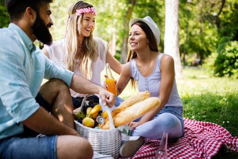 Gelukkige vrienden in het park die picknick op een zonnige dag hebben royalty-vrije stock foto