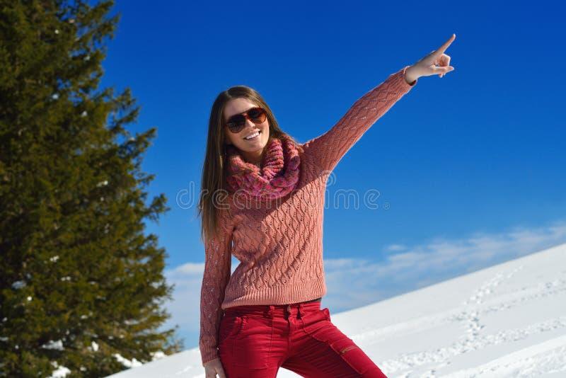 Gelukkige vrouw bij de winter stock foto's