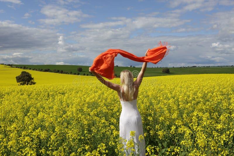 Gelukkige vrouwen flailing sjaal op een gebied van het bloeien canola in spr stock afbeelding
