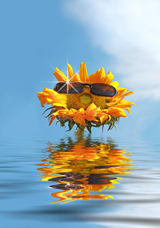 Gelukkige Zonnebloem op Vakantie stock afbeeldingen