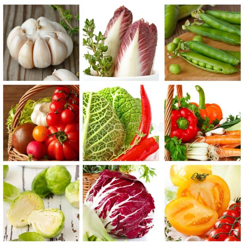 Download Gemüse. stockfoto. Bild von zichorie, gesund, karotte - 27725798