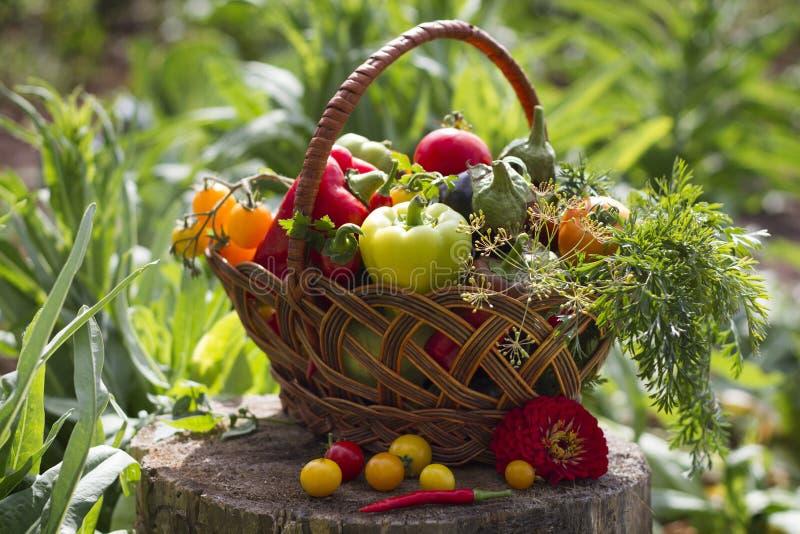 Gemüse in einem Weidenkorb lizenzfreie stockfotos