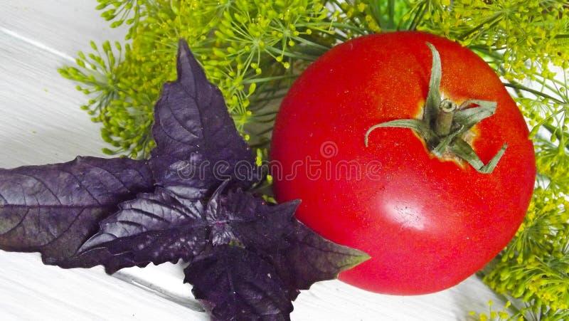 Gemüse für Bewahrung lizenzfreie stockfotos