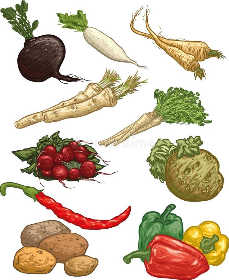 Gemüse II stock abbildung