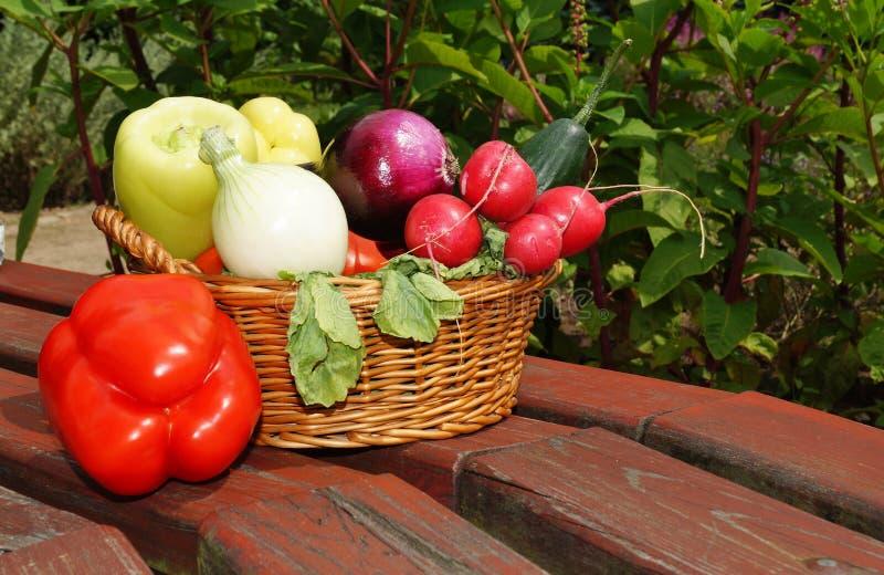 Gemüse im Korb lizenzfreie stockfotos