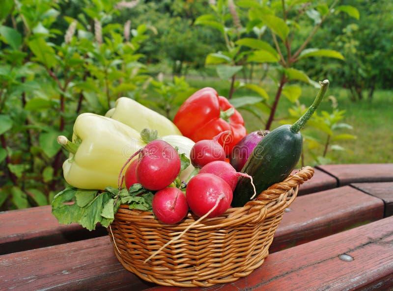 Gemüse im Korb lizenzfreie stockbilder