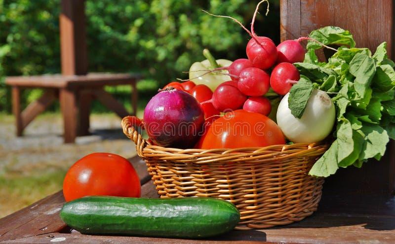 Gemüse im Korb stockbild