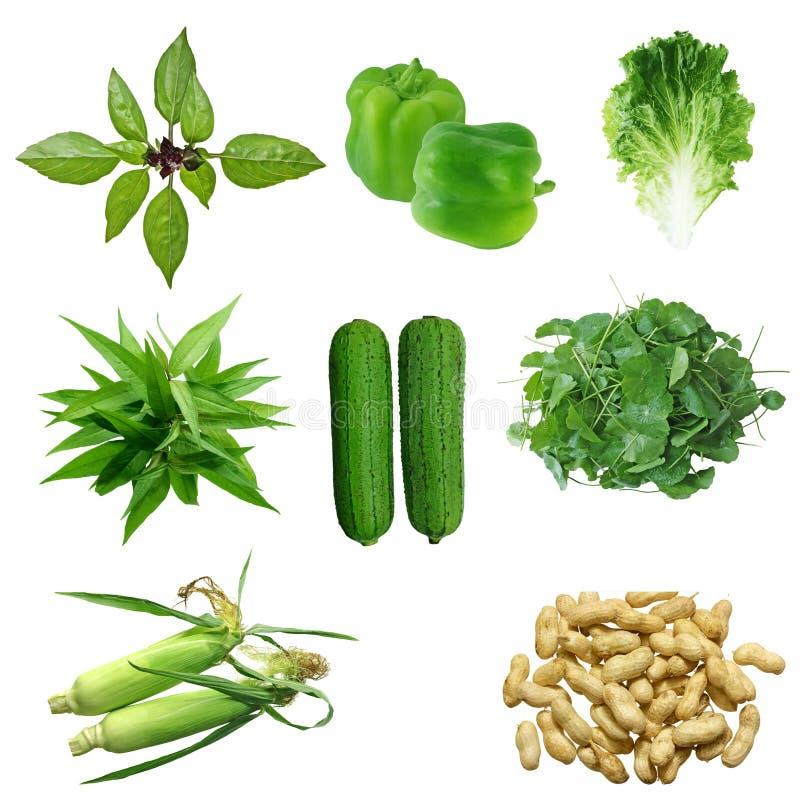 Gemüse-Set lizenzfreie stockbilder