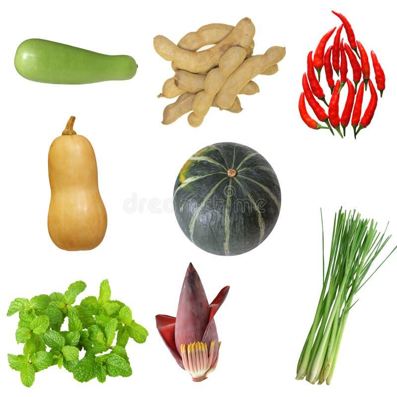 Gemüse-Set stockfotografie