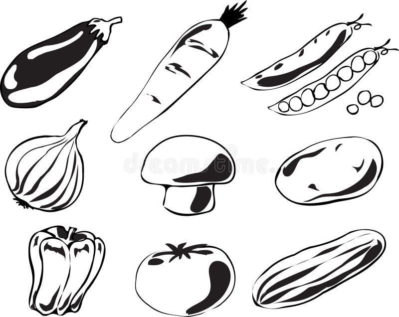 Gemüseabbildung lizenzfreie abbildung