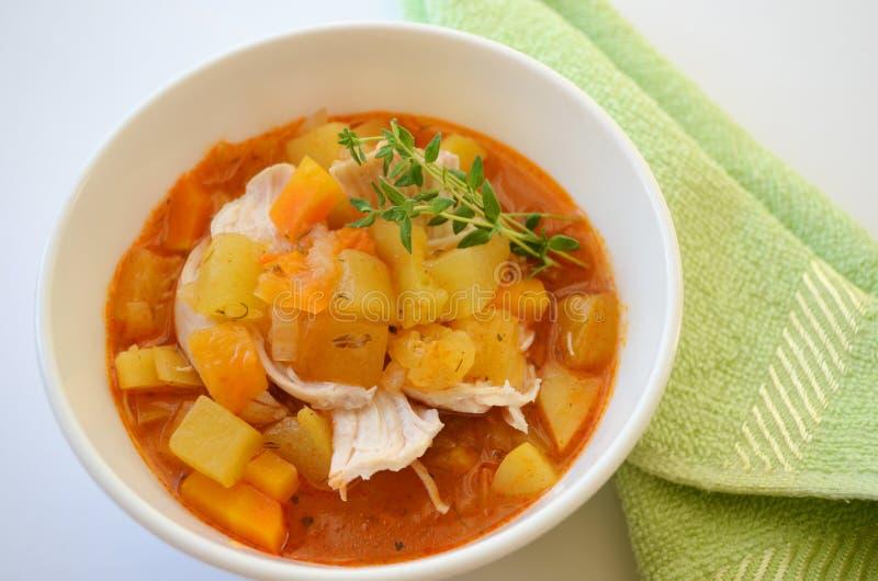 Gemüseeintopfgericht mit Huhn stockfoto