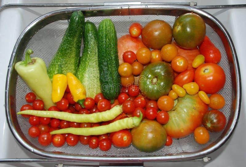 Gemüseernte im Spülbecken stockbild