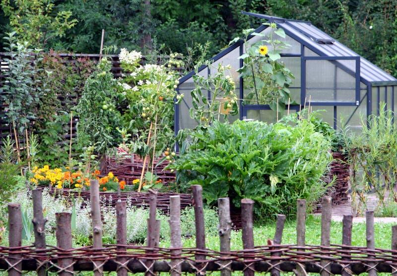 Gemüsegarten lizenzfreie stockbilder