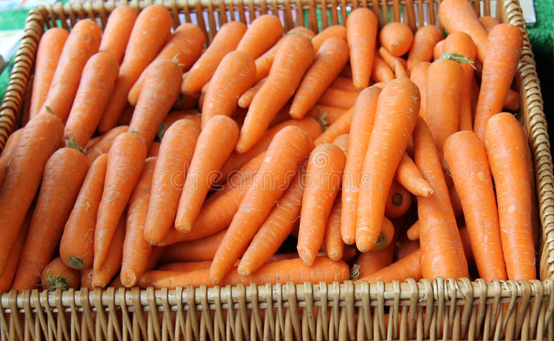 Gemüsekarotten. lizenzfreie stockfotos