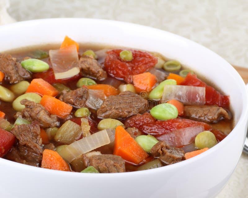 Gemüserindfleisch-Suppe lizenzfreie stockbilder