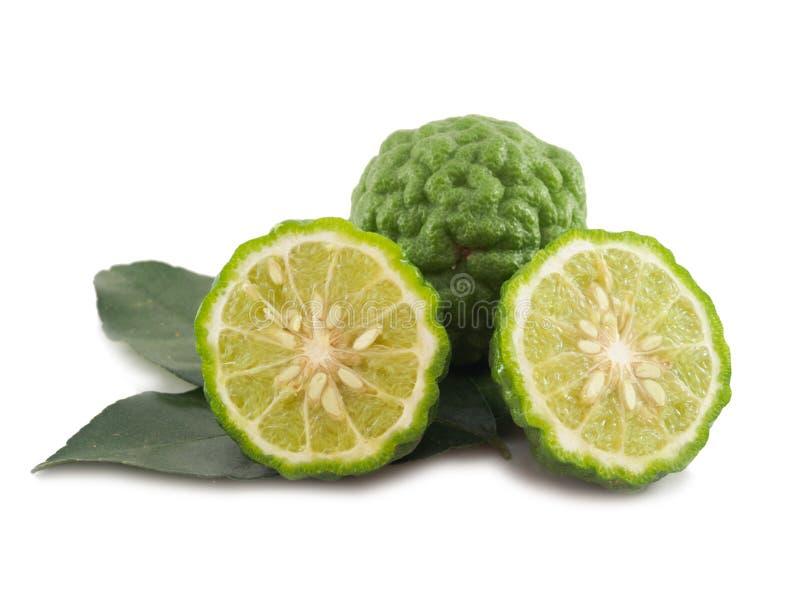 Gemüsescheibe des frischen Bergamotte Kaffir-Kalkes mit Blatt von isolat stockfotos