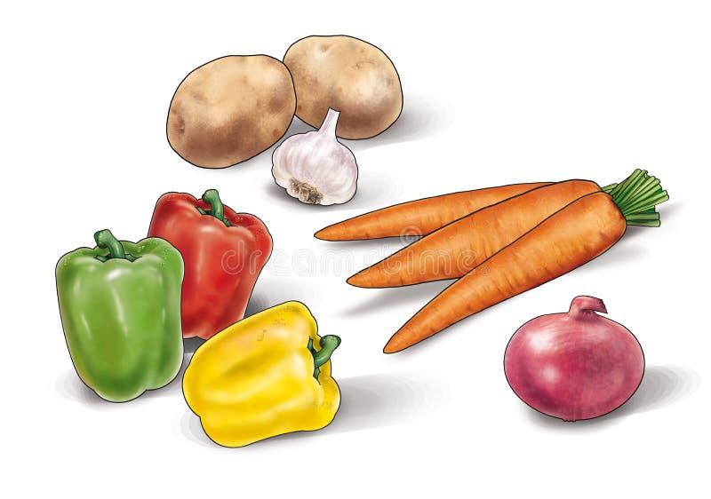 Gemüsestillleben Illustration lizenzfreie abbildung