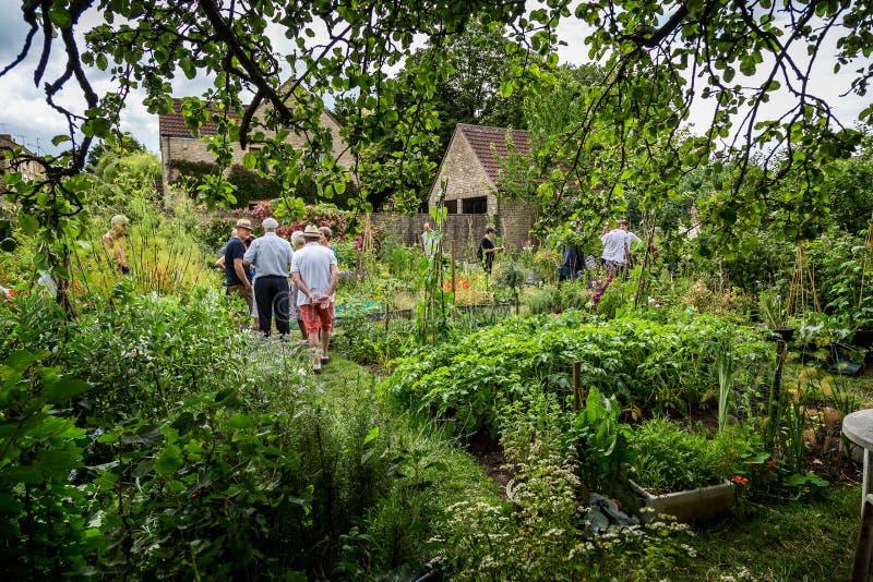 Gemüsezuteilung des englischen Dorfs in Frome, Somerset, Großbritannien stockfoto