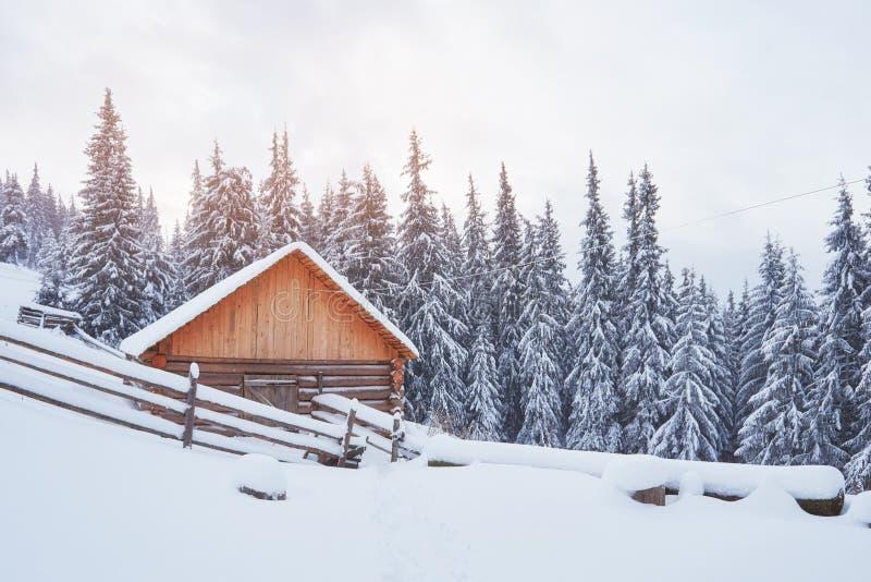 Gemütliche hölzerne Hütte hoch in den schneebedeckten Bergen Große Kiefer auf dem Hintergrund Verlassener kolyba Schäfer bewölkte stockfotografie