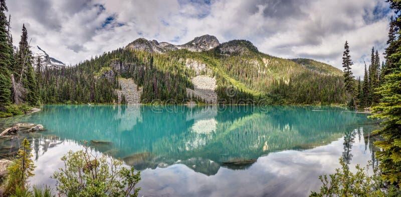Gema escondida do Columbia Britânica foto de stock
