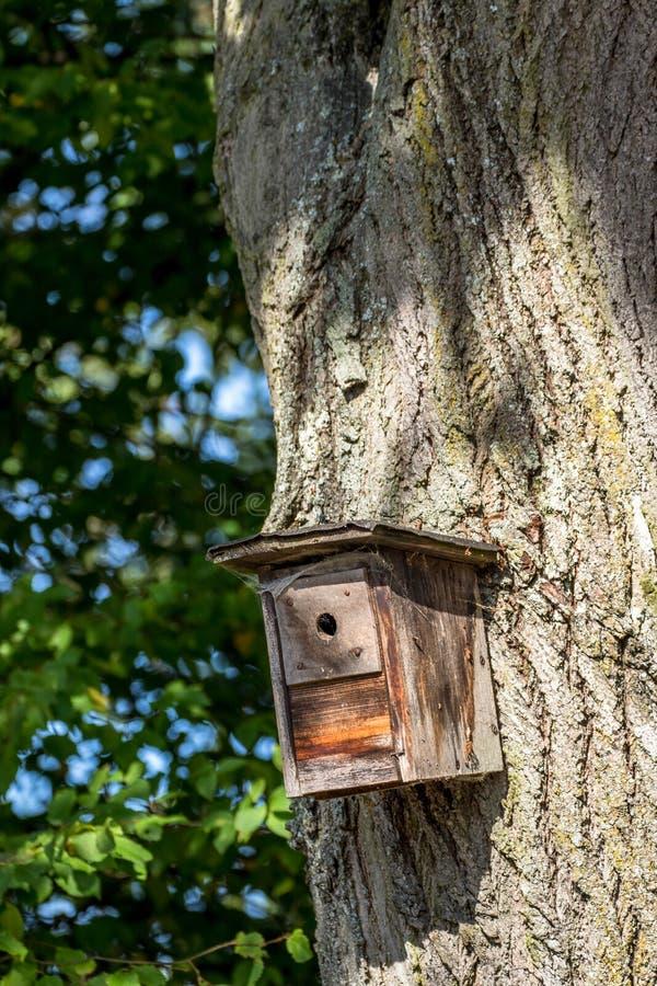 Gemaakt zelf wodden Vogelhuis royalty-vrije stock fotografie