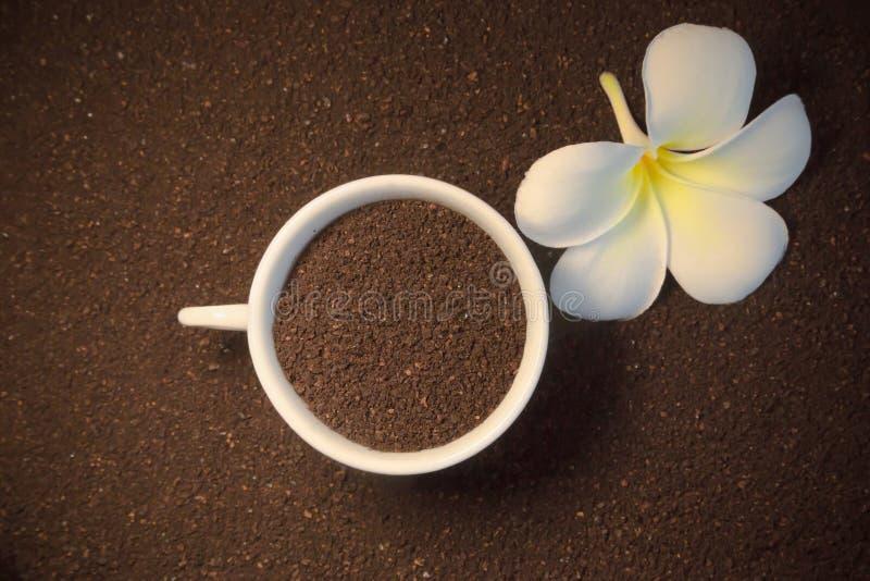Gemahlener Kaffee und Blume lizenzfreies stockbild