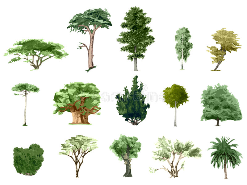 Gemalte Farbenbäume stock abbildung