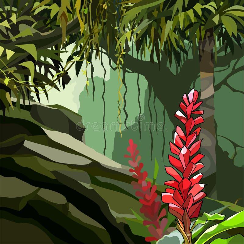Gemalte Ingwerblumen unter tropischen Anlagen im Dschungel stock abbildung
