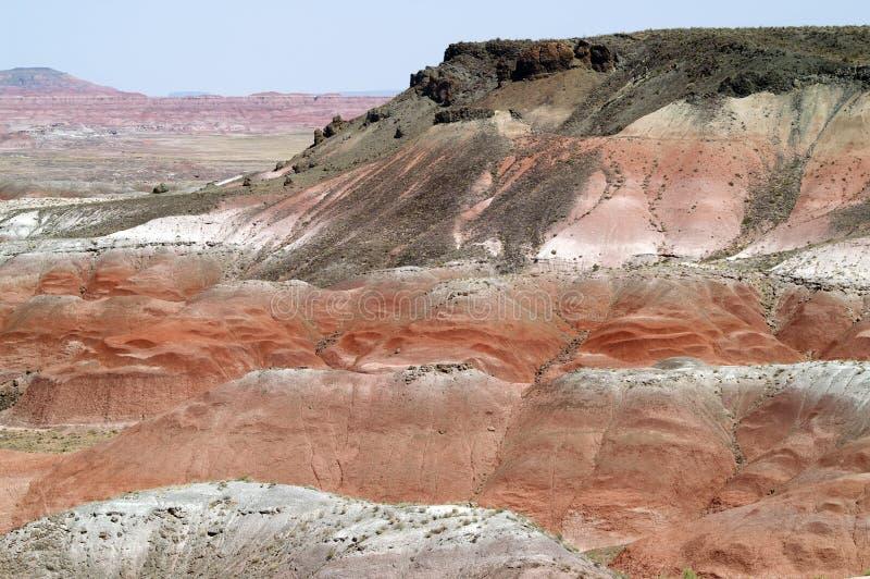 Gemalte Wüste stockfotografie