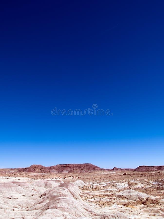 Gemalte Wüste stockfoto