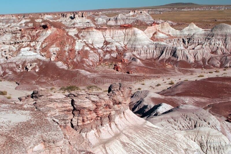Gemalte Wüste lizenzfreies stockfoto