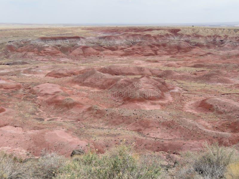 Gemalte Wüste in versteinertem Forest National Park lizenzfreies stockfoto