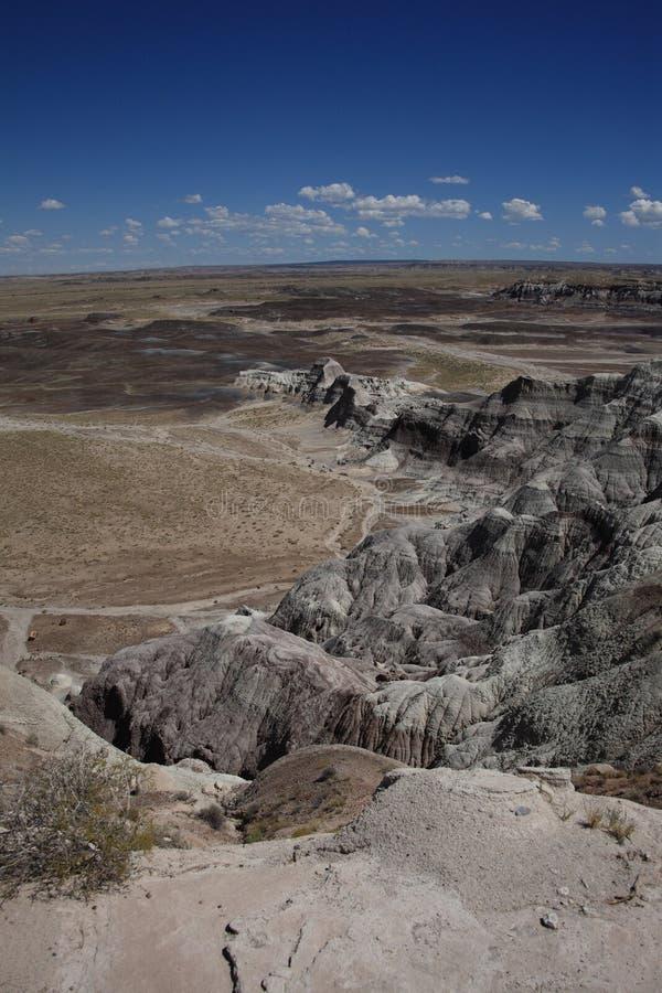 Gemalte Wüsten-Ansicht lizenzfreies stockfoto
