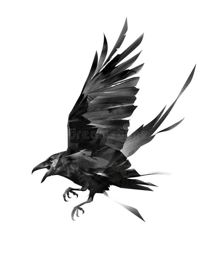Gemalter Fliegenvogel eines Raben auf einem weißen Hintergrund lizenzfreie abbildung