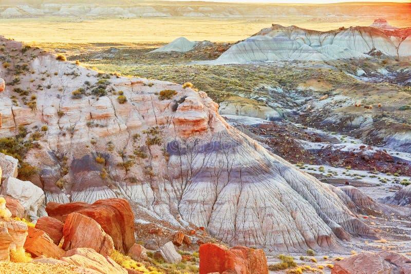 Gemalter Nationalpark der Wüste in Arizona, USA lizenzfreie stockbilder