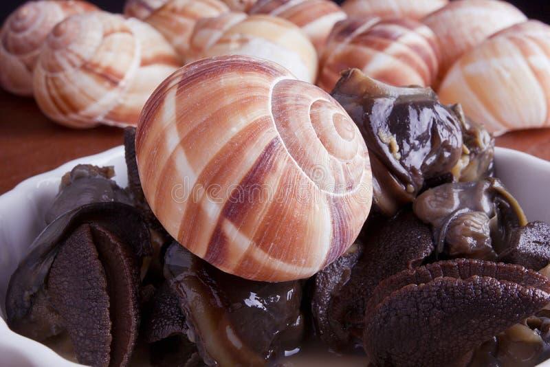 Gemarineerde escargot royalty-vrije stock fotografie
