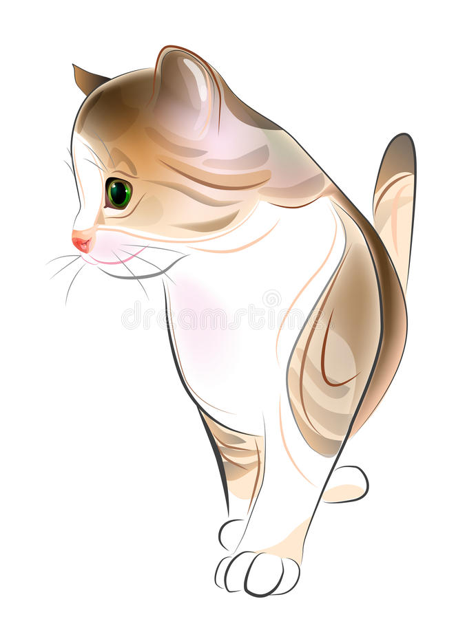 gember tabby katje. vector illustratie