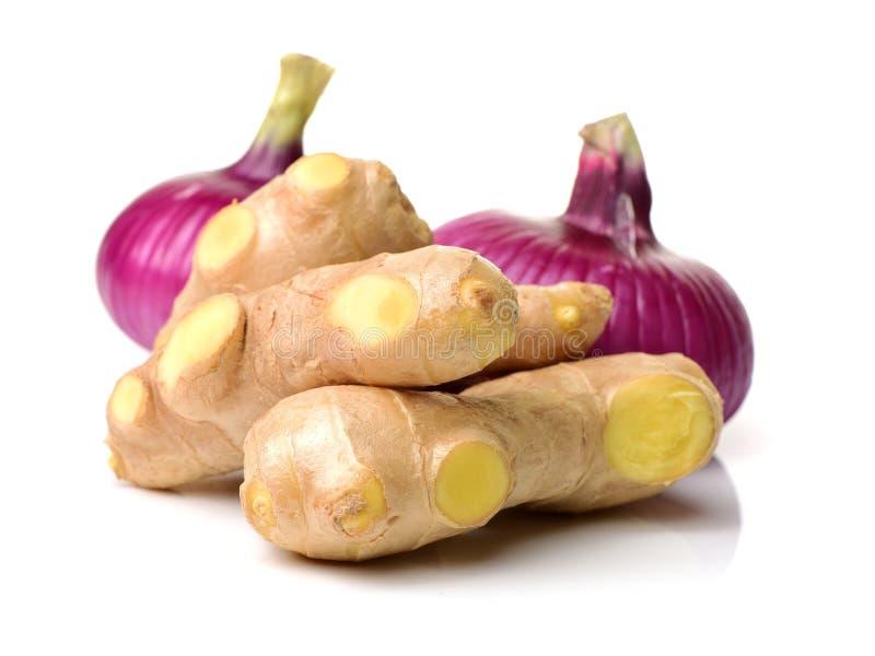 Gemberwortel, ui stock afbeelding