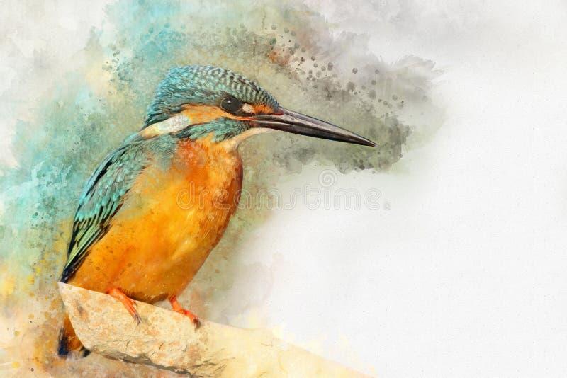Gemeenschappelijke die Ijsvogel - met waterverf wordt geschilderd stock illustratie