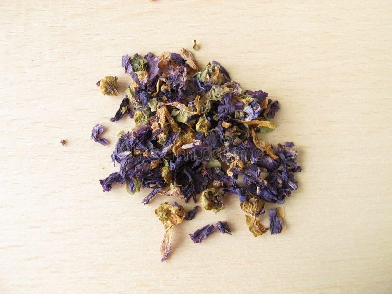 Gemeenschappelijke malvebloemen, flos Malvae stock foto