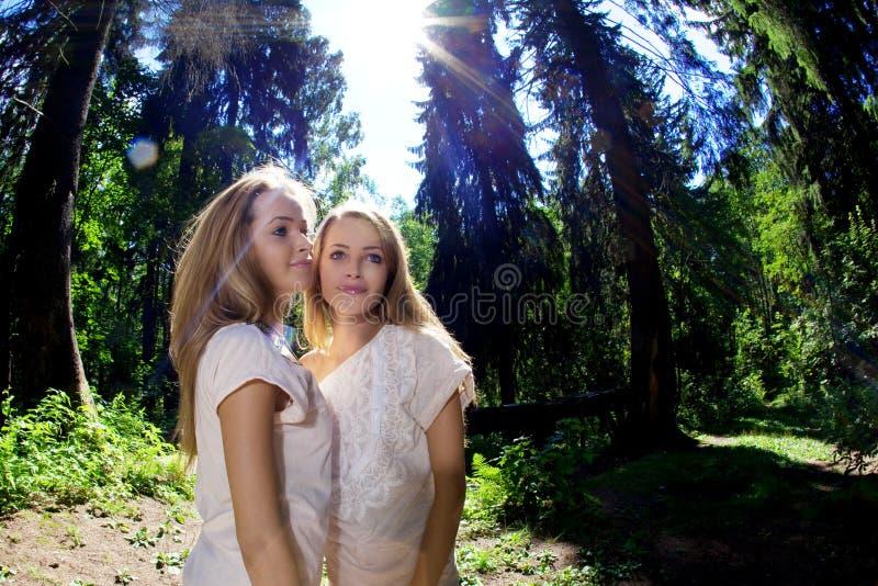 Gemelli nella foresta fotografie stock libere da diritti