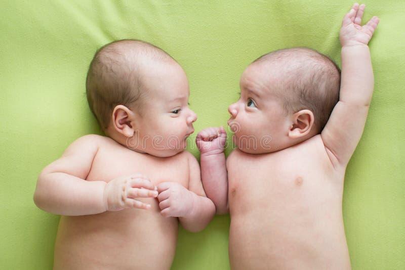 Gemelos hermosos recién nacidos del bebé Retrato del primer, niño caucásico imagen de archivo libre de regalías