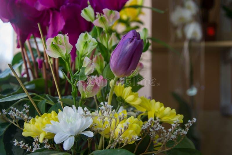 Gemengd bloemenboeket, purpere tulp die, bos van mooie bloemen, voor 8 maart, de dag van de moeder, de dag van vrouwen, de dag va stock afbeelding