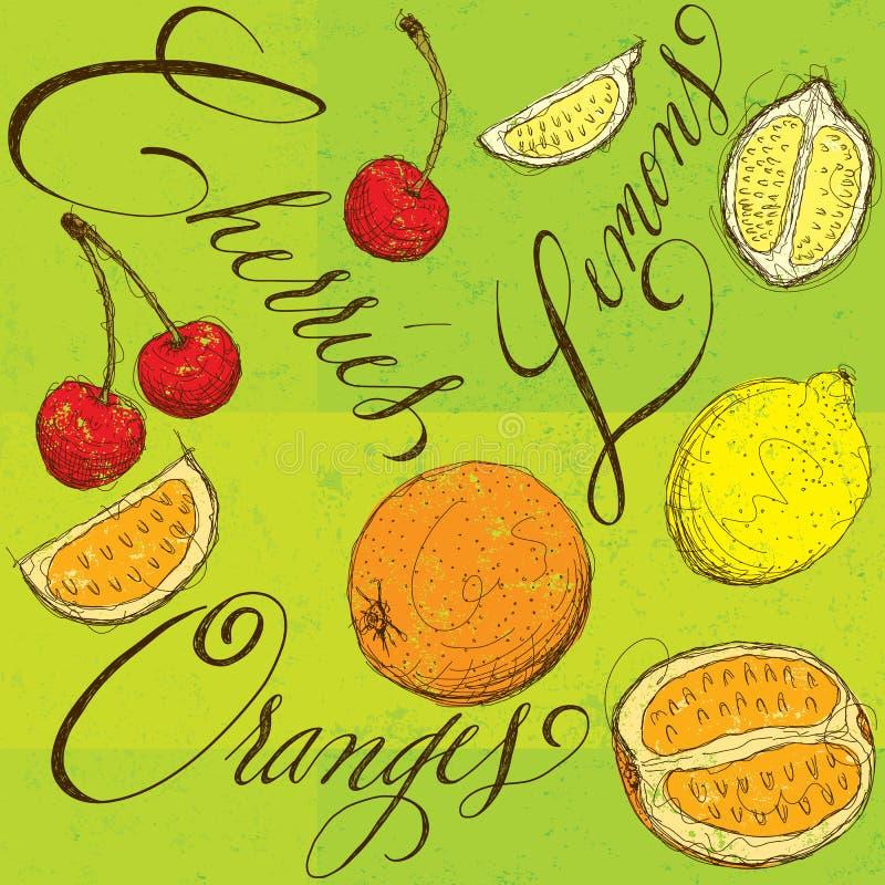 Gemengd fruit met kalligrafie stock illustratie